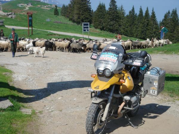 A v přímo v průsmyku pasou ovce...