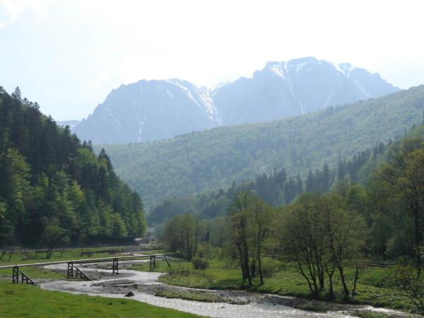Pohled na pohoří Bucegi od Predealu.