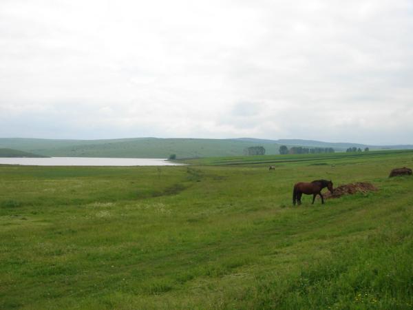 Pár kilomerů východně od Sebeše se nachází slaná jezírka..