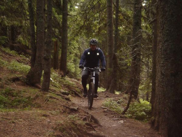 Lesní trail - jedu