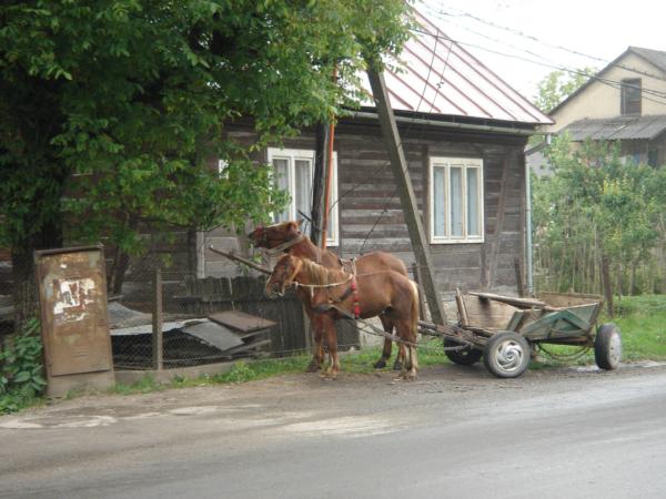 Tohle si tu lidi parkují u domu - jiný kraj, jiný mrav.