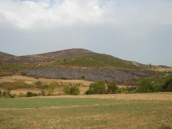 Rozsáhlé vypalování trávy je zde běžné.
