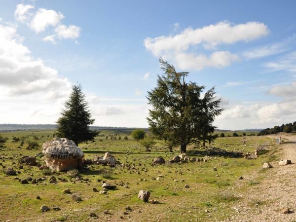 Na náhorní rovině středního Atlasu - jižně od Azrou