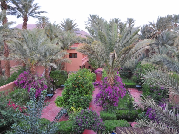 Zahrada hotelu Chez Ali