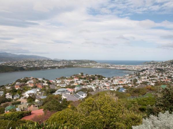 Panorama Wellingtonu.