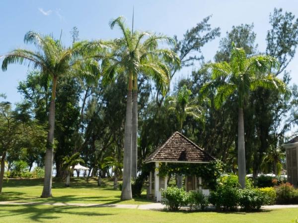Zahrada okolo  bungalovu v areálu hotelu.