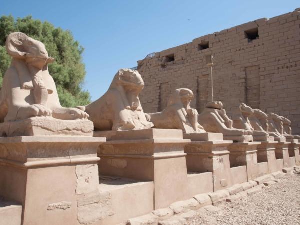 Cestu k chrámu stráží berani.