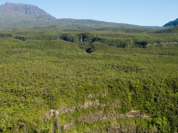 Neprostupné lesy na náhorní plošině.