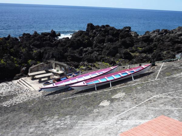 Velrybářské lodě (závodní veslice).