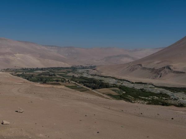 Z ledovců Altiplana stéká voda a díky ní zde vzniklo úrodné údolí.