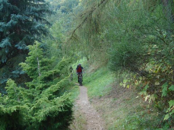 Příjezd na zelenou podél Štěchovické přehrady