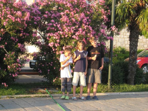 Konzumace sladoletu u městského mola - foceno z lodi.