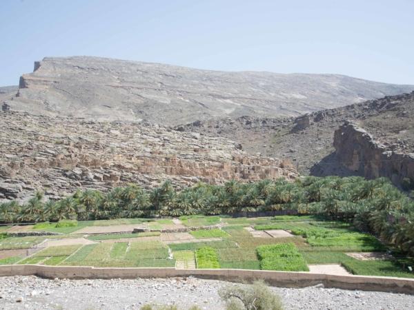 Staré osídlení za městečkem Al Hamra cestou na Jebel Shams.