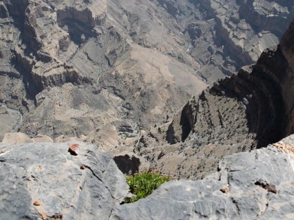 Hloubka kaňonu je skoro 1500 m - vyvolává to závrať...