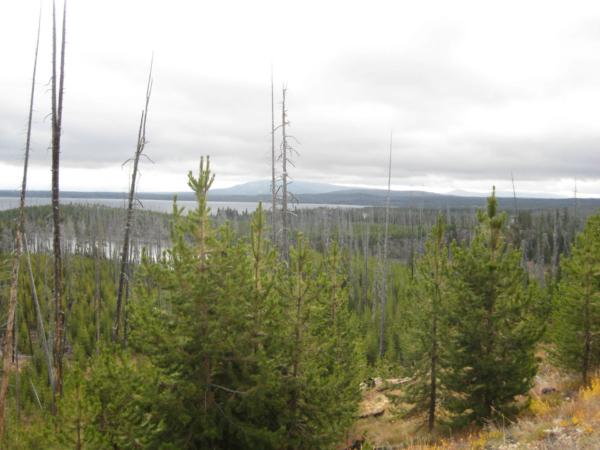 Zanedlouho jsme poblíž jižního vchodu do parku a u jezera Yellowstone Lake.