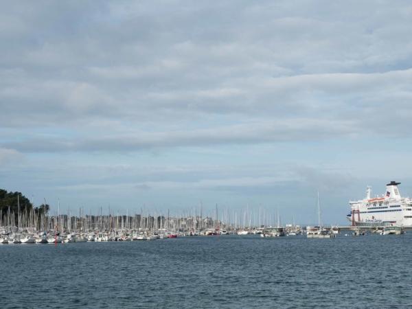 Jachtařský přístav a les stožárů plachetnic.